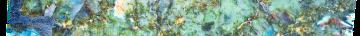 istock-491789980-2-2000x200